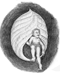"""""""Emergence"""" By: Nancy R. Wofford - Illustrations throughout the book."""